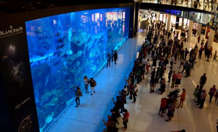 Kostenloser Teil des Dubai Aquariums