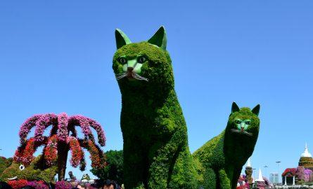 Große Katzen im Miracle Garden aus Blumen und Zweigen