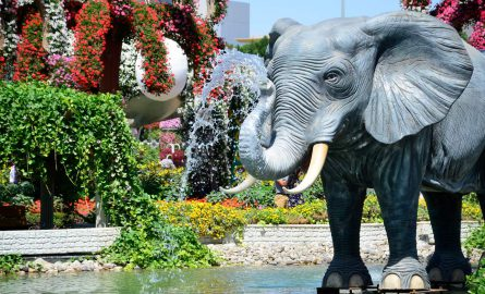 Beeindruckende Tiere im Blumengarten