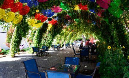 Relaxen und Essen im Schatten des Blumengartens