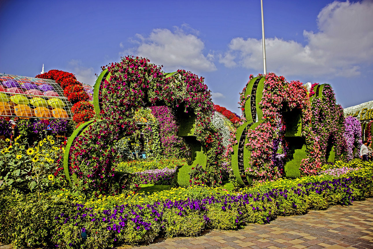 Dubai Miracle Garden & Butterfly Garden – Tickets & Infos